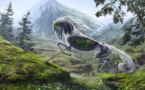 Picture landscape, unicorn, skeleton