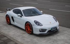 Picture Porsche, Exhaust, 981, Armytrix, Valvetronic