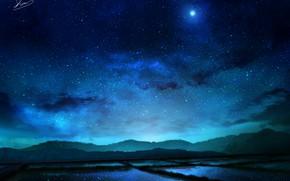 Picture night, nature, Rozovye field