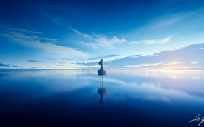 Picture the sky, water, girl, birds, suitcase