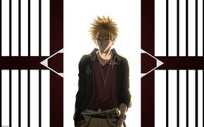 Picture style, Bleach, Bleach, Ichigo Kurosaki
