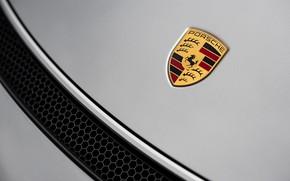Picture Porsche, Spyder, Icon, Porsche 718, 2019, Porsche 718 ( 982 ) Spyder