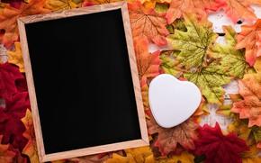 Picture autumn, leaves, love, background, tree, heart, frame, love, heart, wood, background, autumn, leaves, romantic, autumn, …