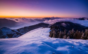 Picture cold, winter, frost, forest, purple, the sky, snow, landscape, sunset, mountains, blue, nature, fog, lilac, …