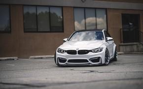 Picture BMW, Light, White, F80, Sight, LED, Aggressive