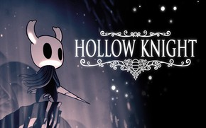 Picture Game, Hollow Knight, Team Cherry