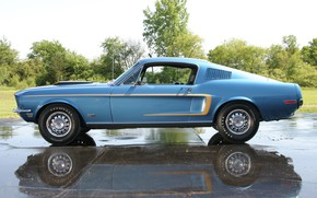 Picture Muscle, Ford Mustang, Classic, Blue, Fastback, Cobra Jet, GT 428