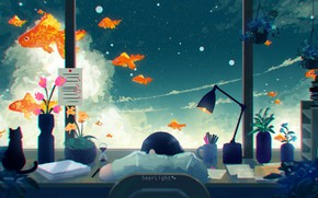 Picture cat, the sky, girl, table, sleeping, goldfish, by SeerLight