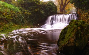 Picture autumn, leaves, water, trees, Park, thickets, foliage, stone, waterfall, moss, stream, the bushes