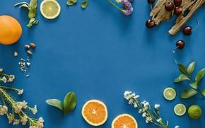 Wallpaper flowers, blue, cherry, background, orange, lime, fruit, slices