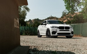 Picture BMW, X6M, White, Sight, F86, Adaptive LED