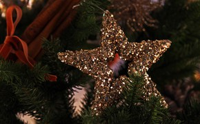 Picture winter, holiday, star, Shine, Christmas, New year, needles, Christmas decorations, Christmas toys