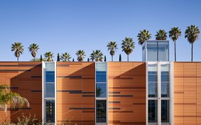 Picture the sky, palm trees, architecture, structure, Palomar Community College District