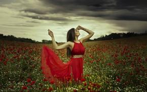 Picture field, summer, girl, flowers, nature, pose, Maki, the evening, dress, Judith Ugrai