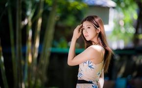Picture girl, pose, sweetheart, hair, Asian, bokeh