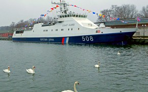 Picture swans, Baltiysk, patrol, Reliable, project 2340