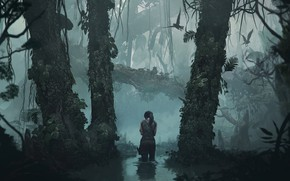 Picture Water, Reflection, Girl, Trees, Birds, Jungle, Square Enix, Lara Croft, Shadow of the Tomb Raider