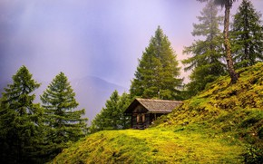 Picture trees, mountains, house