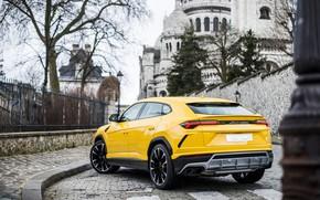 Picture Paris, Lamborghini, rear view, 2018, Urus