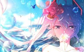 Picture look, bubbles, rose, Hatsune Miku, Vocaloid, Vocaloid, Hatsune Miku