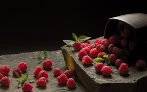 Picture berries, raspberry, stones, mug, black background, placer