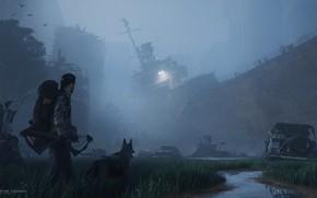 Picture fog, stream, ship, dog, Breeze in monochrome night