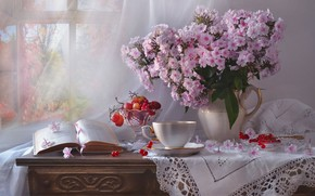 Picture flowers, berries, window, grapes, Cup, book, pitcher, still life, curtain, chest, napkin, vase, Kalina, Phlox, …