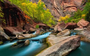 Picture autumn, trees, stones, rocks, Utah, USA, the river virgin, Zion