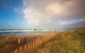 Picture sea, beach, shore