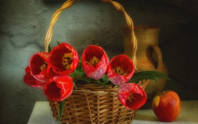 Picture red, basket, tulips