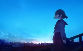 Picture blue, anime, waifu, Director