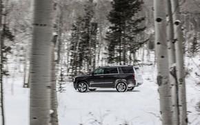 Picture side view, 2018, GMC, SUV, Denali, Yukon