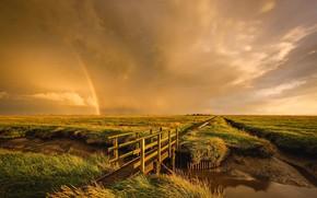 Picture field, landscape, nature, beauty, rainbow, channel, the bridge