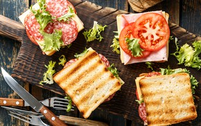 Picture cheese, bread, tomatoes, cutting, toast, salami
