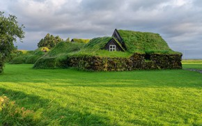 Picture roof, greens, field, grass, clouds, house, tree, glade, window, meadow, house, Iceland, lawn, stone, mounds, …