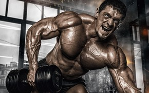 Picture muscle, muscle, pose, training, dumbbells, gym, bodybuilder, dumbbells, bodybuilder, gym, training