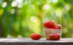 Picture green, table, background, food, basket, tomatoes, tomatoes, bokeh, dulci