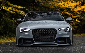 Picture road, lights, style, grey, Audi, audi, lights, view, wheels, road, style, quality, beautiful, beautiful, wheel, …
