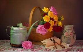 Picture flowers, style, basket, roses, vase, lake, still life, basket, scissors, napkin