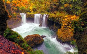 Picture autumn, forest, lake, waterfall