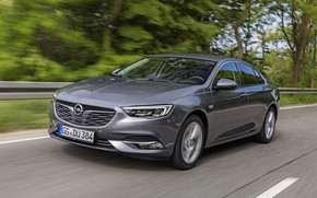 Picture road, the fence, Insignia, Opel, dark gray