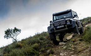 Picture the sky, tree, black, Mercedes-Benz, SUV, 4x4, G500, G-Class, 2015, G 500, 4x4², V8 biturbo