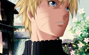Picture guy, Naruto, Naruto, blonde, Uzumaki Naruto