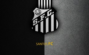 Picture wallpaper, sport, logo, football, Saints, Brazilian Serie A