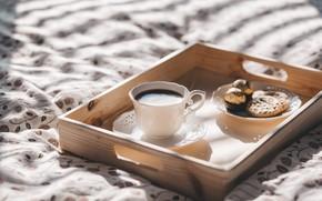 Picture coffee, chocolate, Breakfast, morning, cookies, mug, coffe