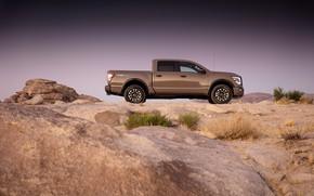 Picture Nissan, pickup, in profile, Titan, 2020, Pro-4X