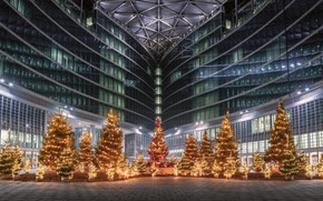 Picture the city, holiday, building, new year, Italy, tree, Milan, shopping center