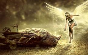 Picture fairy, Sparrow, girl, bird