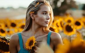 Picture field, summer, look, girl, the sun, light, sunflowers, flowers, nature, bokeh