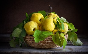 Picture leaves, the dark background, table, still life, basket, items, composition, quince
